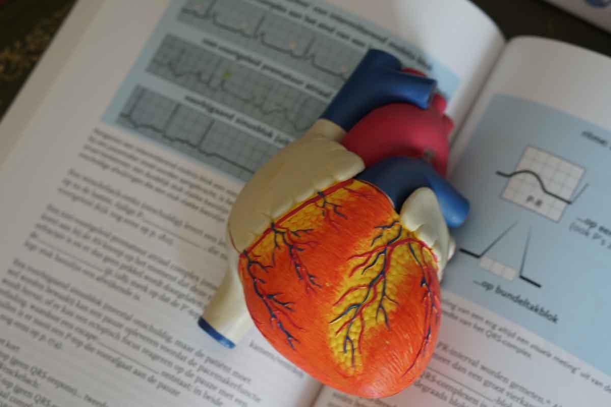 Hipertensión arterial deporte